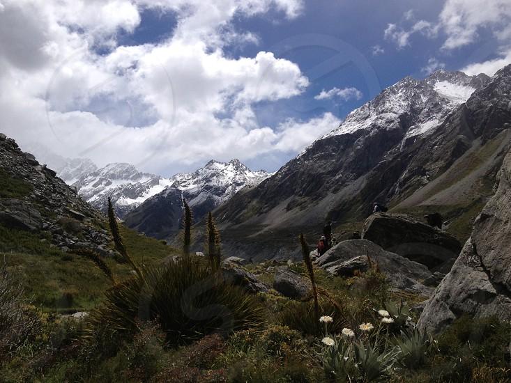 Mountains. Snow. Nature. Flower.  photo