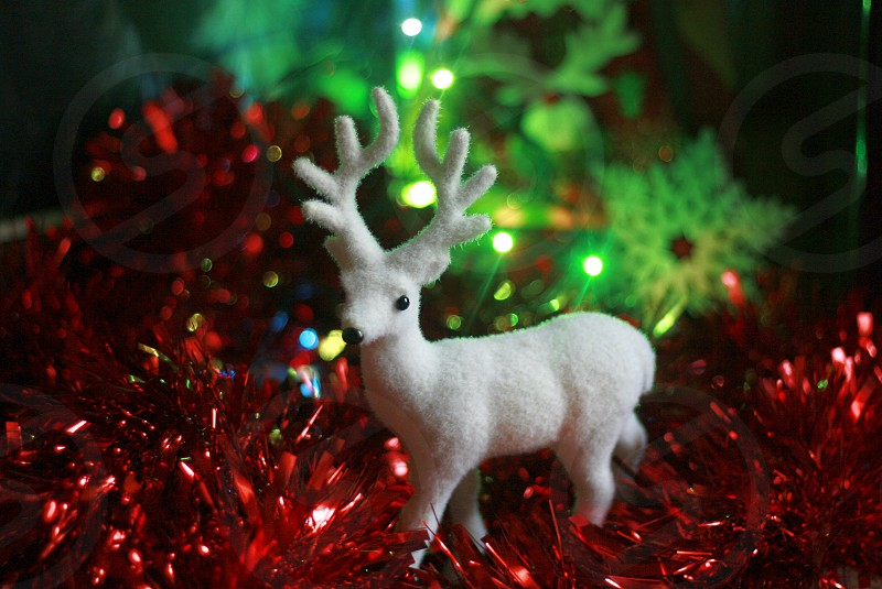 A white deer figurine at the Christmas decoration 2 photo