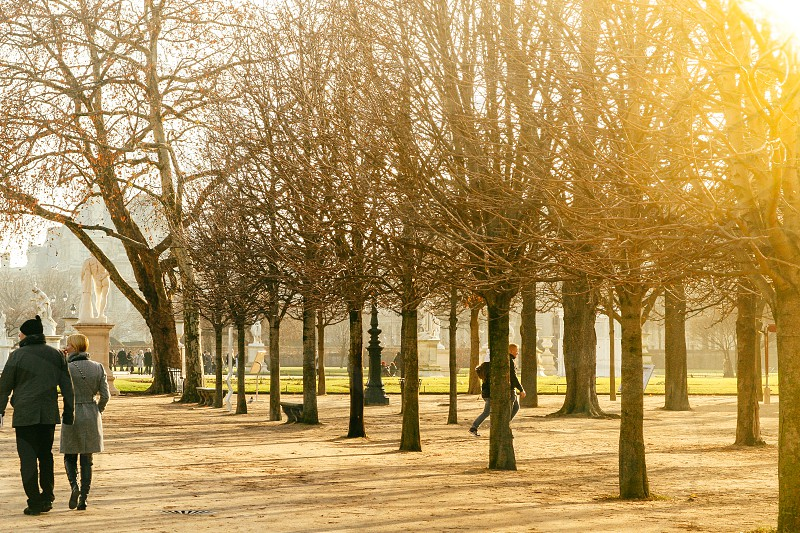 Tuileries Garden Paris France photo