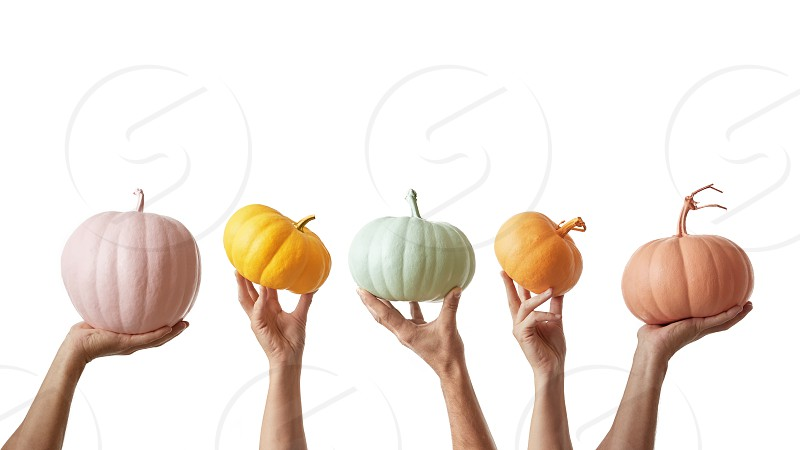 Creative painted handmade colorful pumpkin in a pastel colors holding by many hands on a white background. Halloween concept. photo