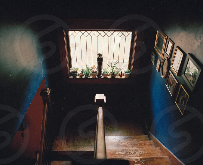 vases placed on window pane on stairs photo