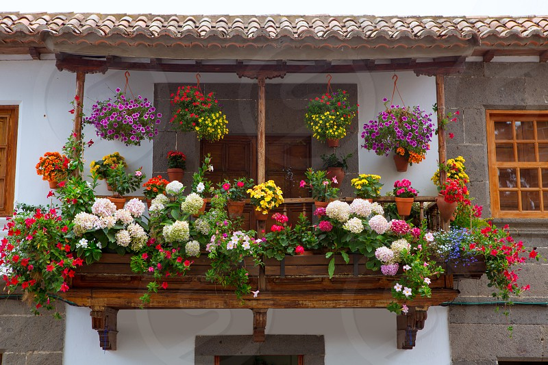Gran Canaria Teror flower pot balcony in Canary islands photo
