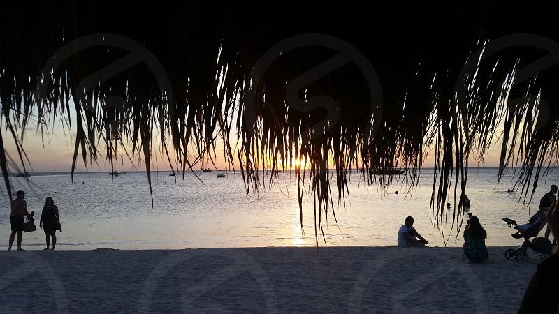 Aruba Eagle Beach Sunset Horizon Ocean Beach Vacation Families Couples Palm Trees Shade photo