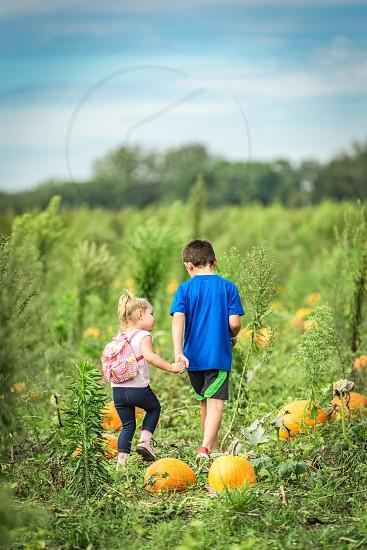 Little boy and little girl hold hands walking through a pumpkin patch during fall time. Little boy aged 7 and little girl aged 3. photo
