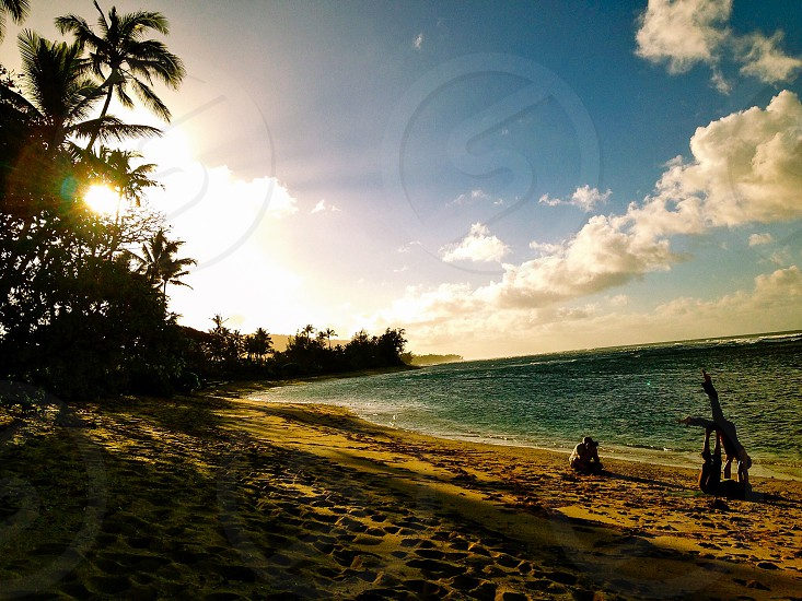 sitting person by shore near coconut trees under blue skies during golden hour photo