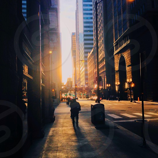 Sunset in Chicago photo