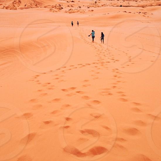 pink coral sand dunes utah photo