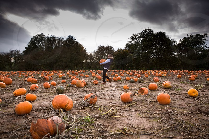 person carrying pumpkin though pumpkin patch photo