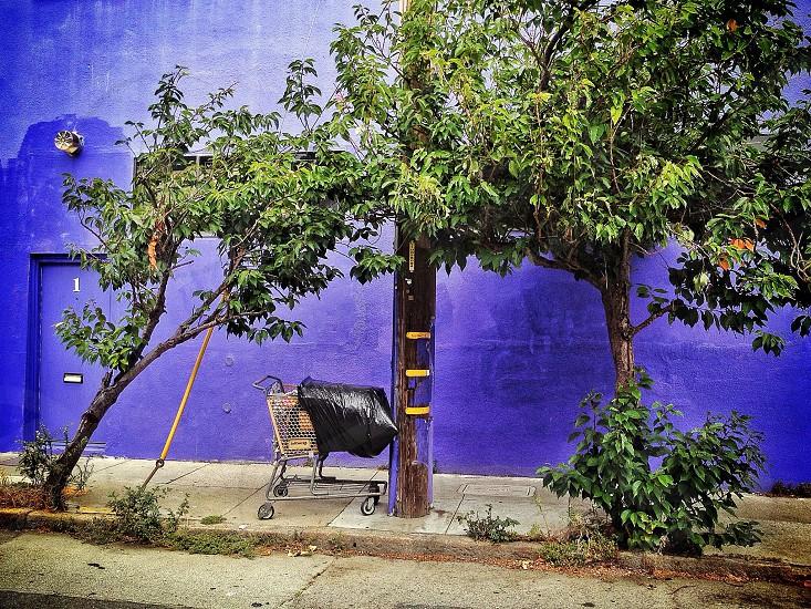 gray shopping cart beside tree trunk photo