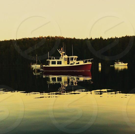 Stuart Island WA photo