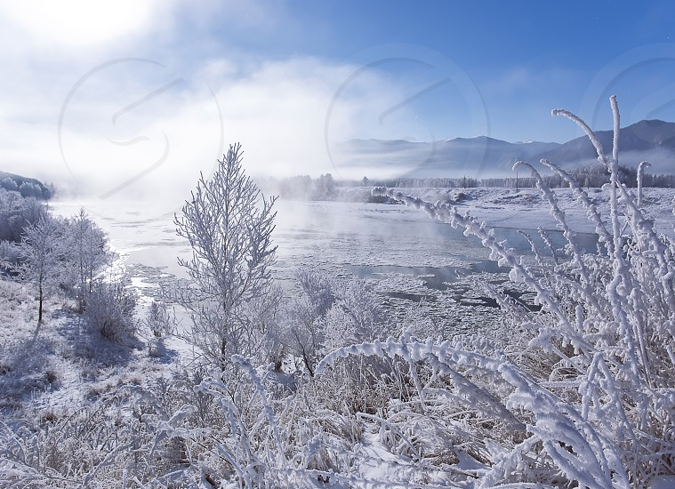 Winter landscape - frosty winter plants on the background of sunset and winter river cold mist landscape winter view. Winter colorful landscape view. Russia Siberia Altai photo