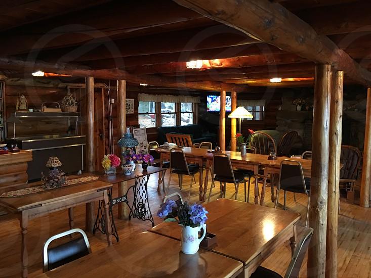 Log cabins photo
