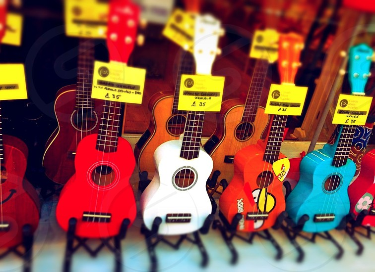 multicolored ukuleles in store display photo