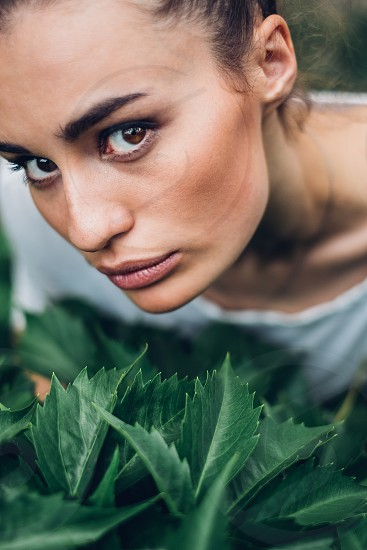 portrait of brunette woman in the green leaves photo