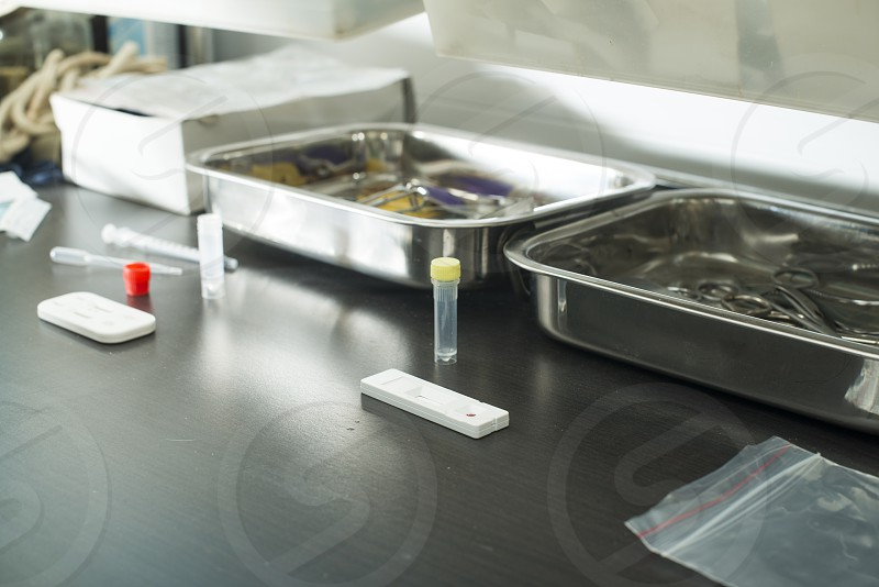 Veterinary Blood test  in veterinary laboratory photo