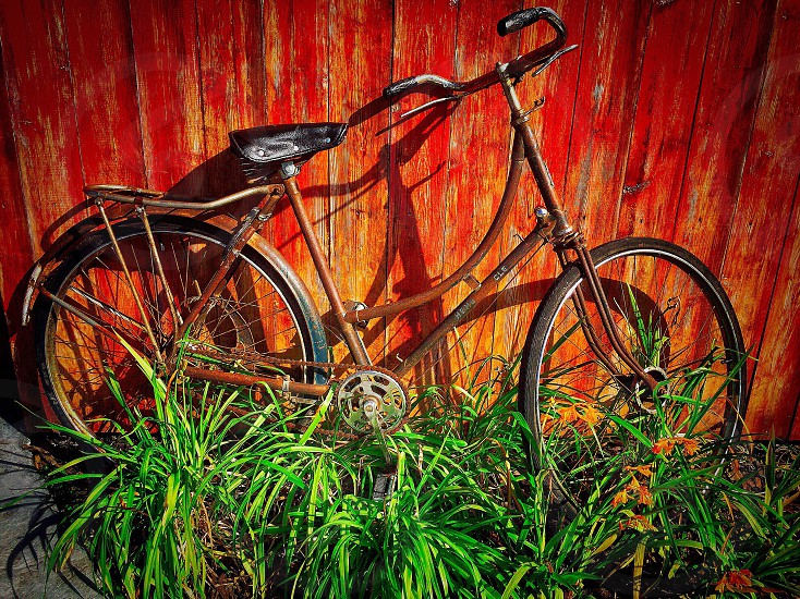 brown step through bicycle next to wooden wall and green grasses photo