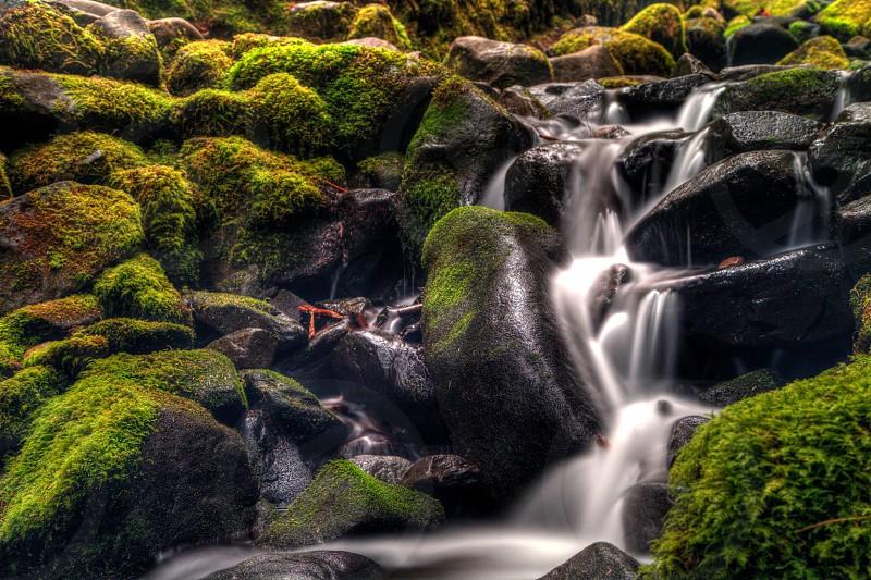 Sol Duc Falls WA photo