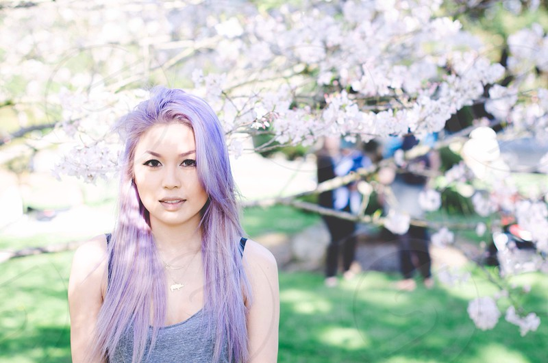 woman with purple hair standing near white cherry blossoms photo