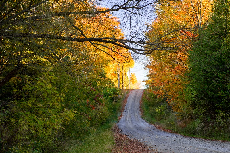 Open Fall Country Road photo