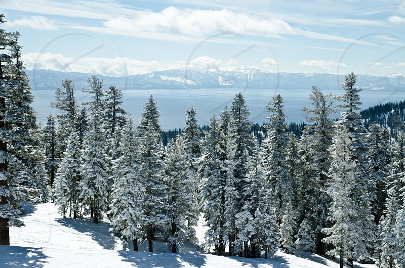 Lake Tahoe view from Northstar resort photo