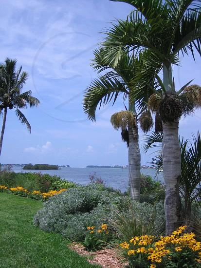 Florida. Bay photo