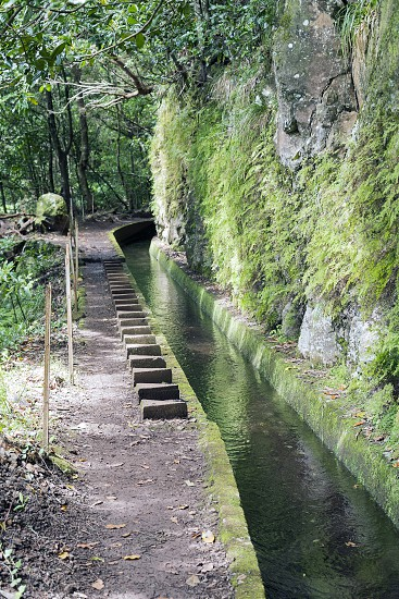 typical levade walking track  on the portugal island of Madeira this is Lamaceiros Ribeira da Janala photo
