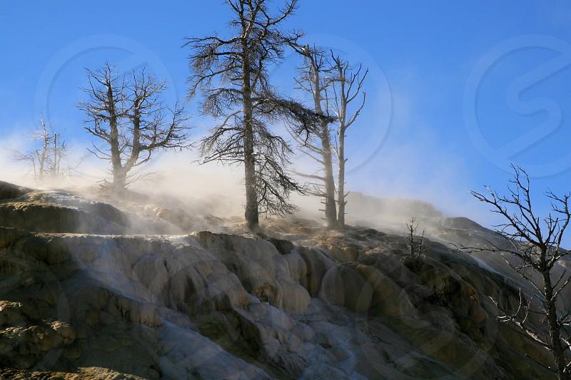 Yellowstone- photo