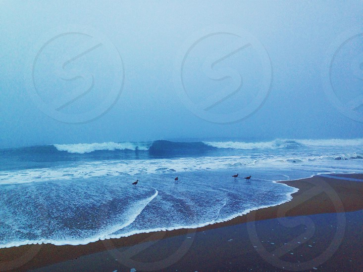 water waves hitting beach sand photo