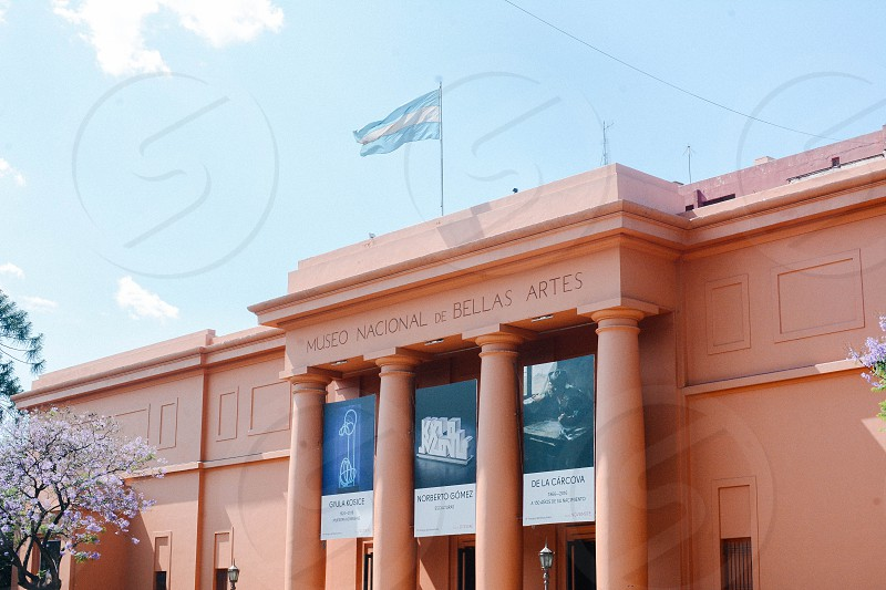 Museo Nacional of Bellas artes photo
