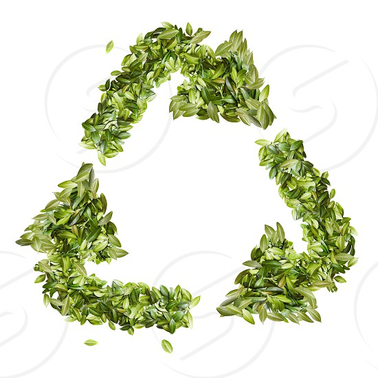 Recycle sign made from leavs isolated on white background.flat lay photo