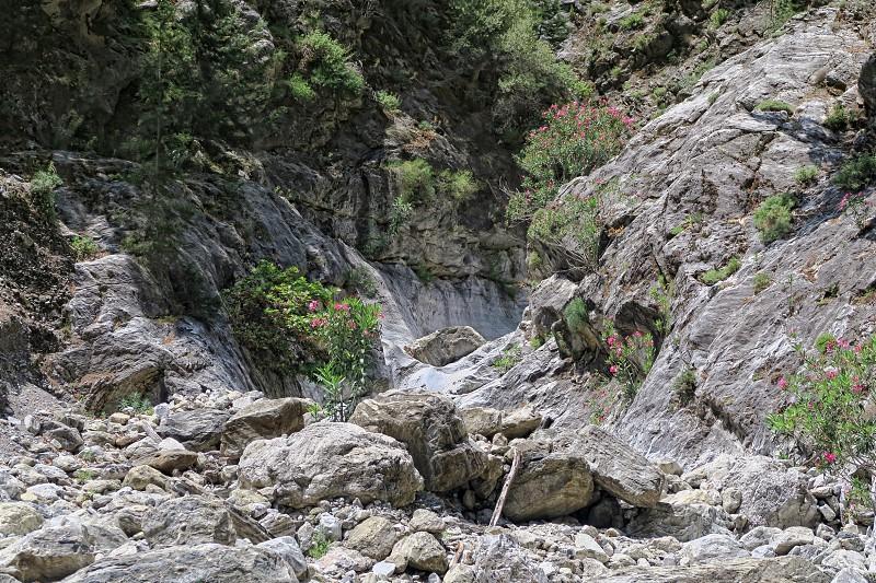 hiking through the landscape of Samaria Gorge at Crete (Greece).  photo
