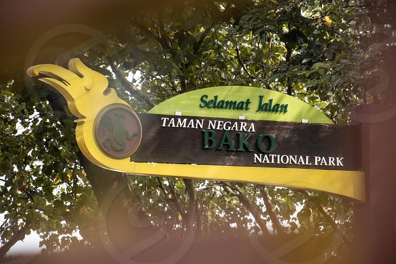 Bako National Park Sarawak Malaysia photo
