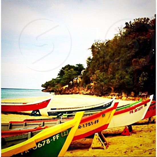 wooden boats on sea side and hill with tree under clear sky photo