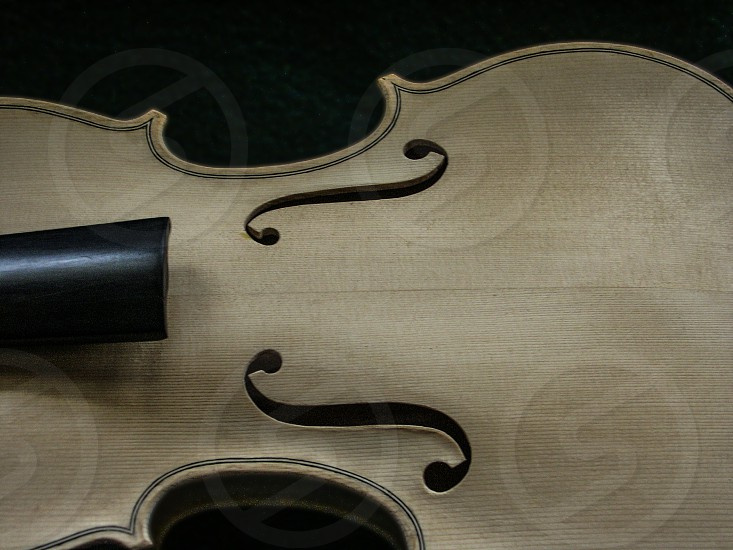 Violin in the Making photo