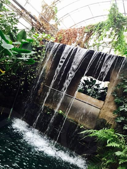 Waterfall - Safari - Water  photo