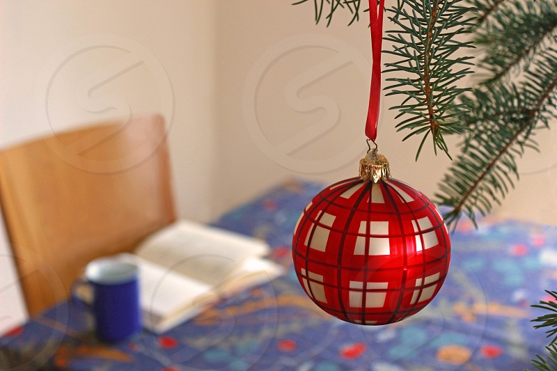 christmas time: christmas tree with a red checkered ball standing in a living room beside a table with a coffee cup and a book tranquil scene photo