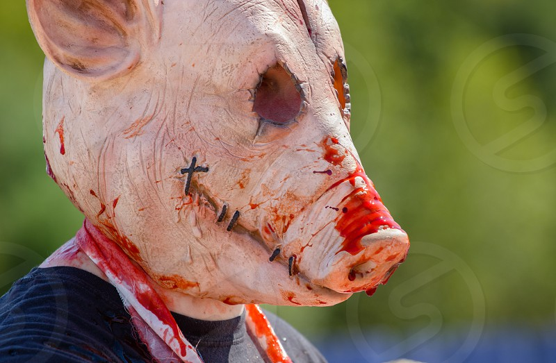 Zombie pig at an outdoor Halloween festival photo
