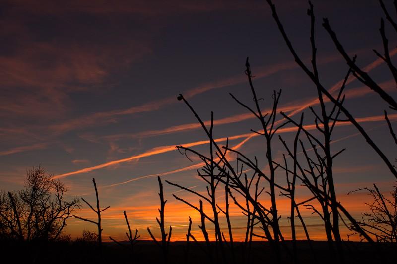 Sunset lights. photo