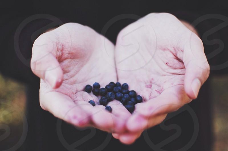 black berry on hand photo