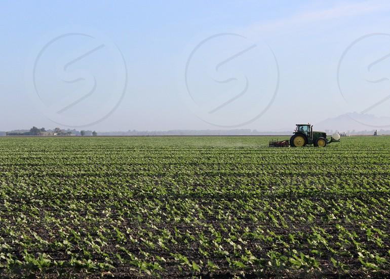 view of green grassy field photo