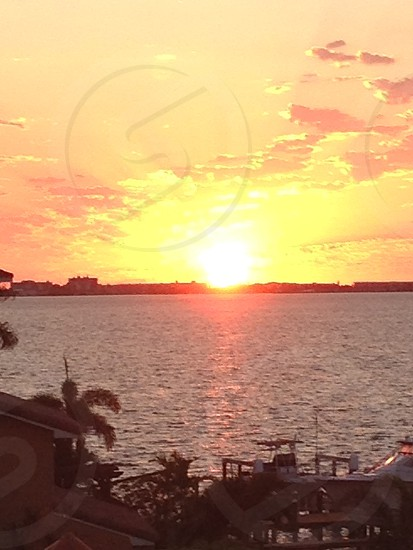 St. Petersburg FL = Beautiful  photo
