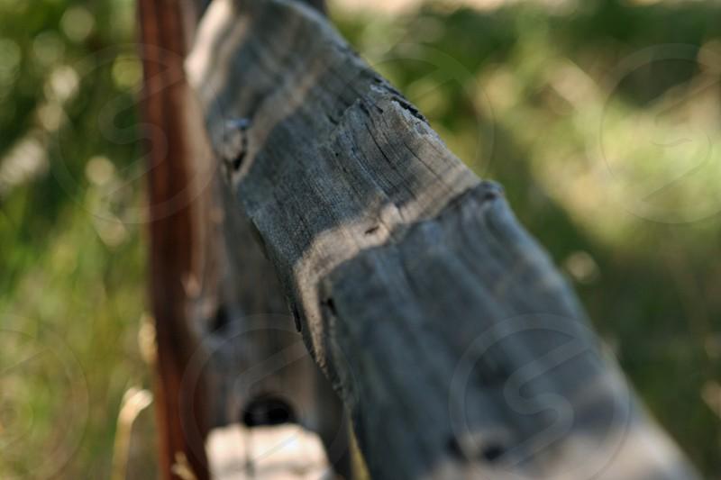 Fence line photo