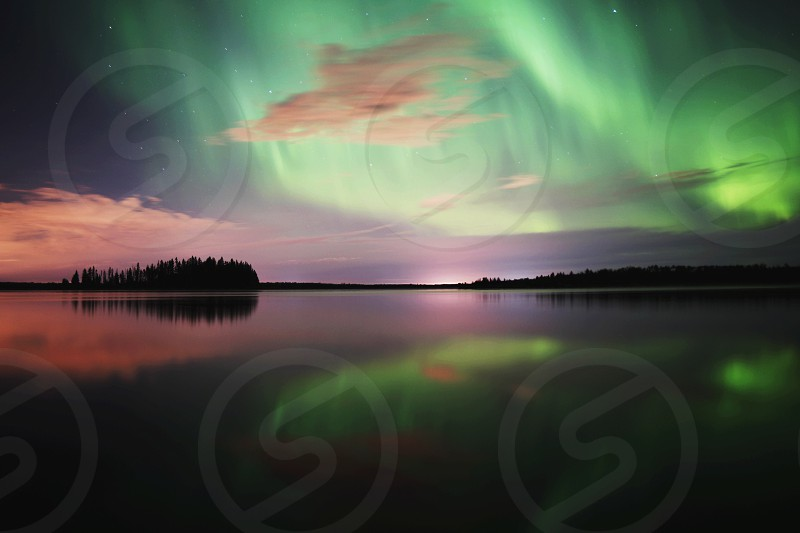 silhouette of trees by water under green aurora during nighttime photo