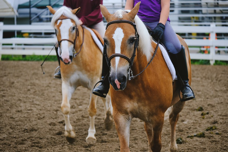 Two girls riding horses through arena. photo