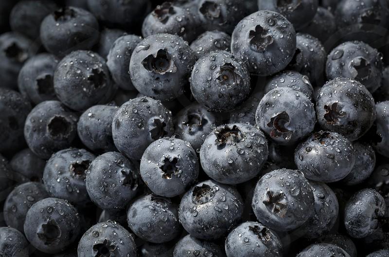 Close up of fresh raw organic blueberries photo
