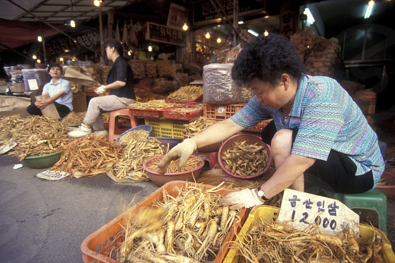 ginseng in a shop on a market in the city of Seoul in South Korea in EastAasia.  Southkorea Seoul May 2006 photo
