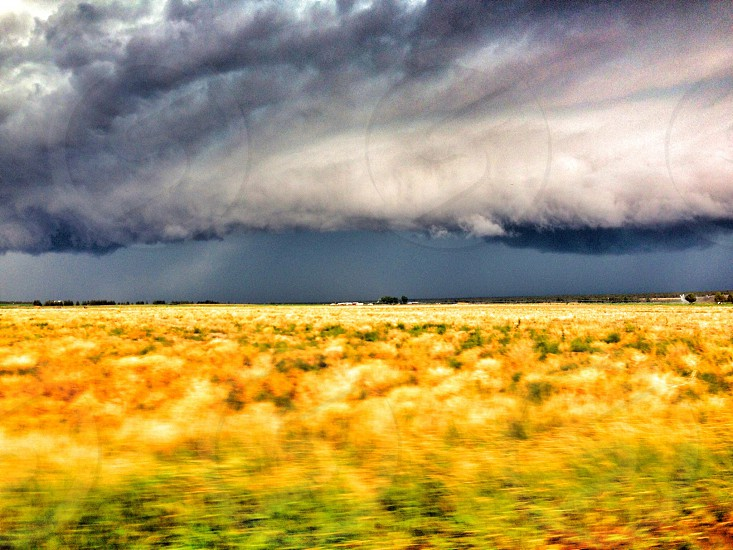 Stormy Day photo