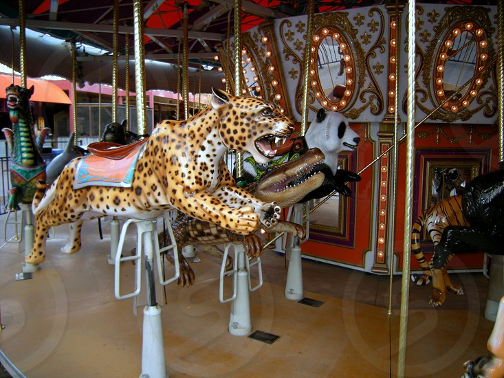 Strange carousel animals cheetah photo