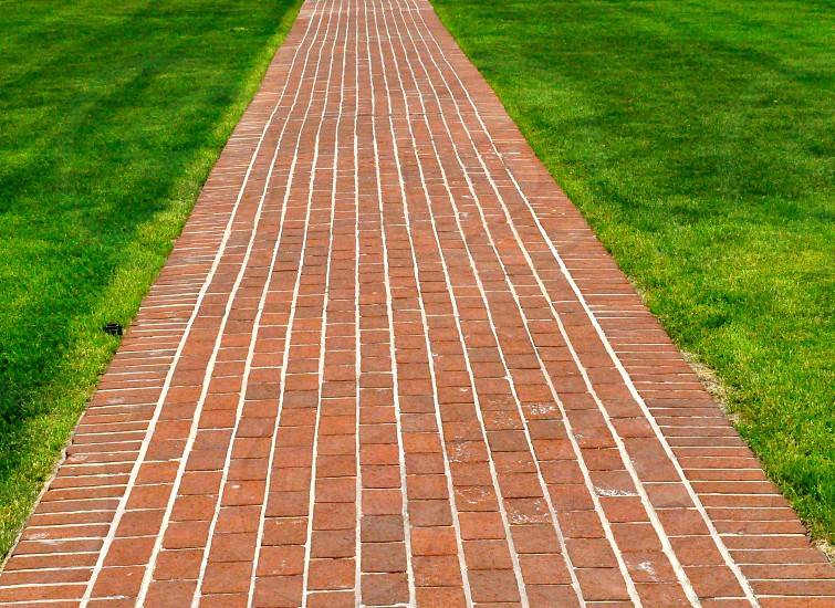 Brick pathway along green grass photo