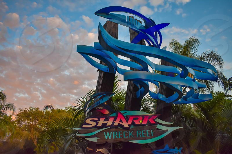 Orlando Florida. March 09 2019. Colorful Shark sign on beautiful sunset background at Seaworld in International Drive area. photo